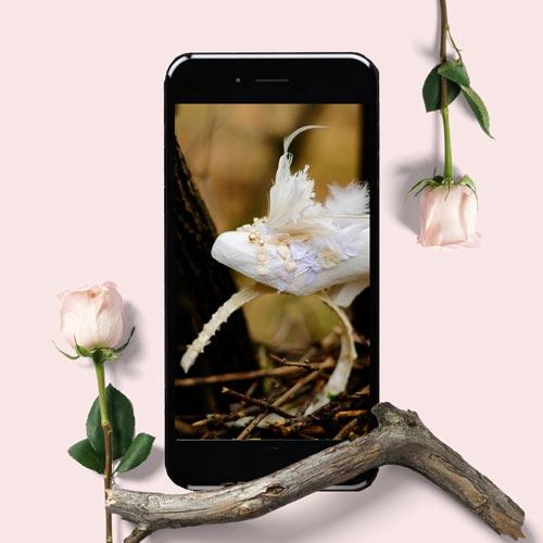 white headband product shot in phone